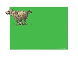 Bryan's Dog by Larry Hankin